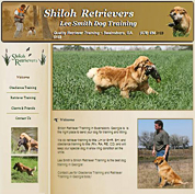 Shiloh Retrievers - Retriever Handler - Georgia