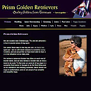 Prism Golden Retrievers